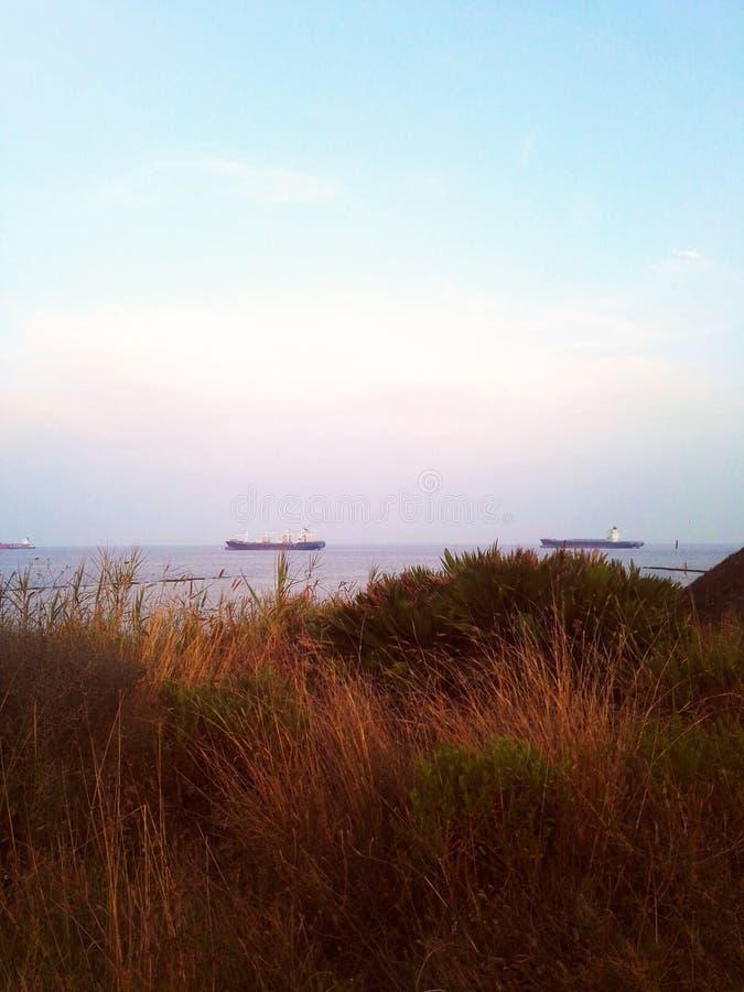 Μπους και θάλασσα στοκ εικόνα