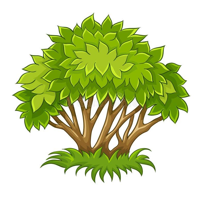 Μπους με τα πράσινα φύλλα ελεύθερη απεικόνιση δικαιώματος
