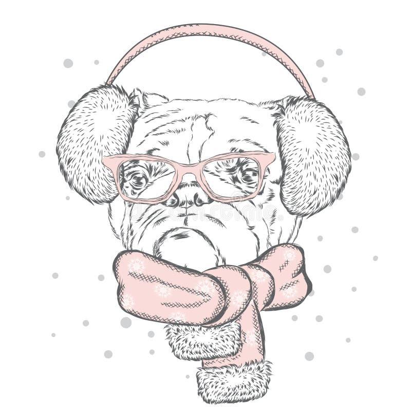 Μπουλντόγκ στα χειμερινά ακουστικά χαριτωμένο κουτάβι Γενεαλογικό σκυλί Χειμερινές διακοπές ελεύθερη απεικόνιση δικαιώματος