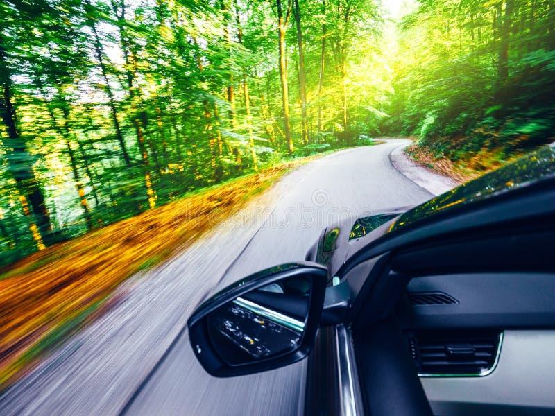 Μπροστινή οδήγηση καθρεφτών αυτοκινήτων γρήγορα στο δάσος στοκ φωτογραφία με δικαίωμα ελεύθερης χρήσης
