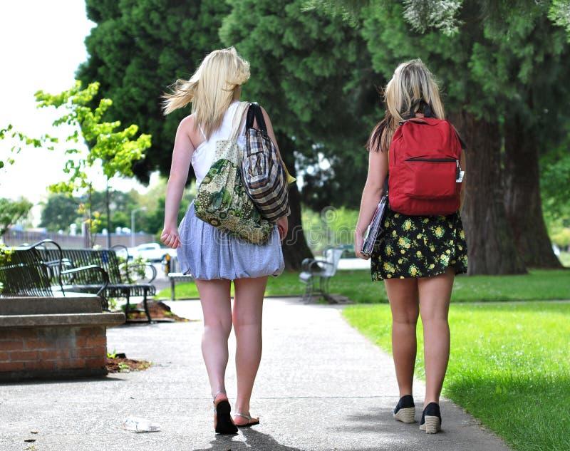 μπροστινό περπάτημα σχολι&kap στοκ εικόνες