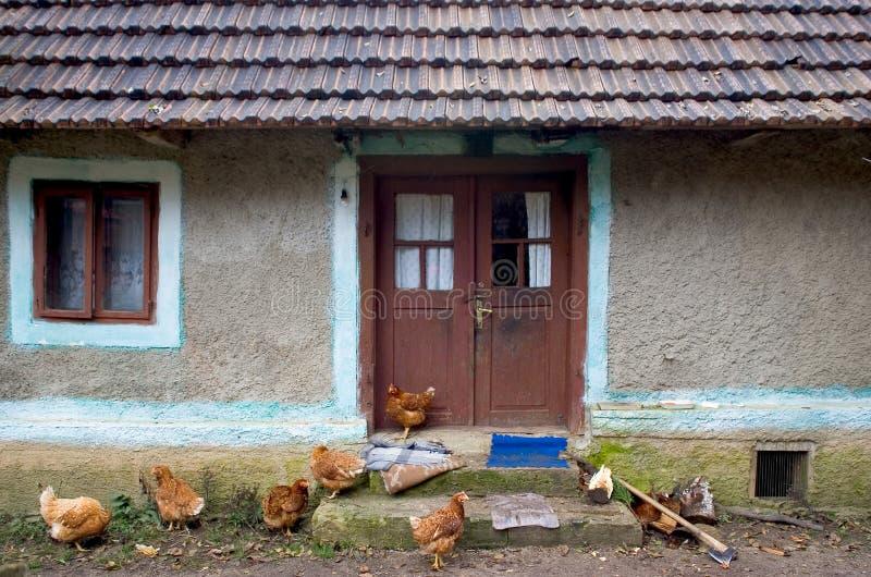 μπροστινό σπίτι κοτόπουλω& στοκ εικόνες