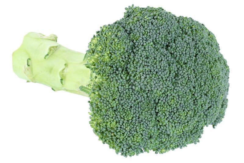Μπρόκολου λαχανικό τροφίμων που απομονώνεται φρέσκο στοκ φωτογραφία με δικαίωμα ελεύθερης χρήσης