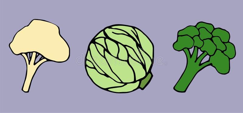 Μπρόκολο, κουνουπίδι και λάχανο σε ένα πορφυρό υπόβαθρο απεικόνιση αποθεμάτων