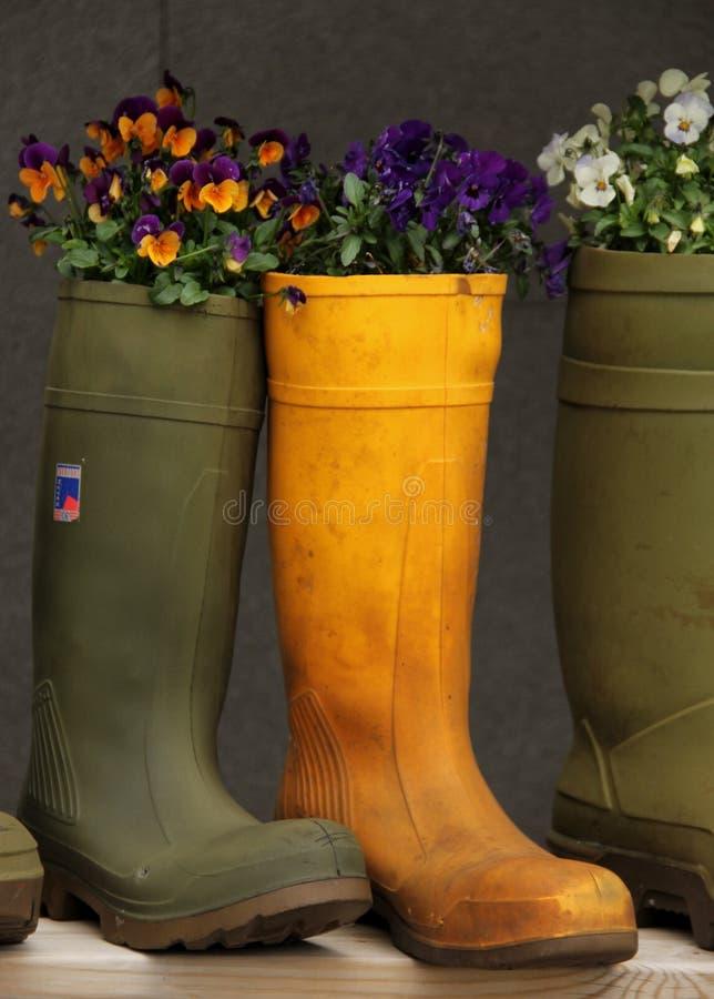 Μπότες βροχής στοκ εικόνα με δικαίωμα ελεύθερης χρήσης