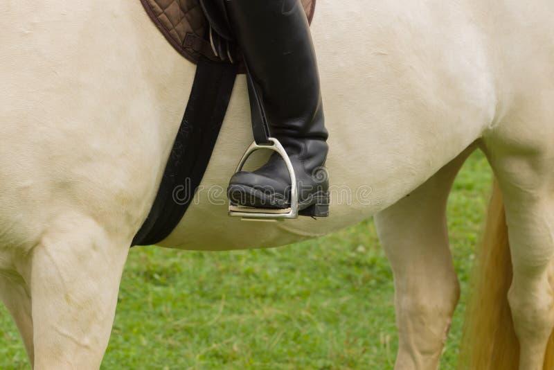 Μπότες και αναβολεείς ιππασίας στοκ εικόνα με δικαίωμα ελεύθερης χρήσης