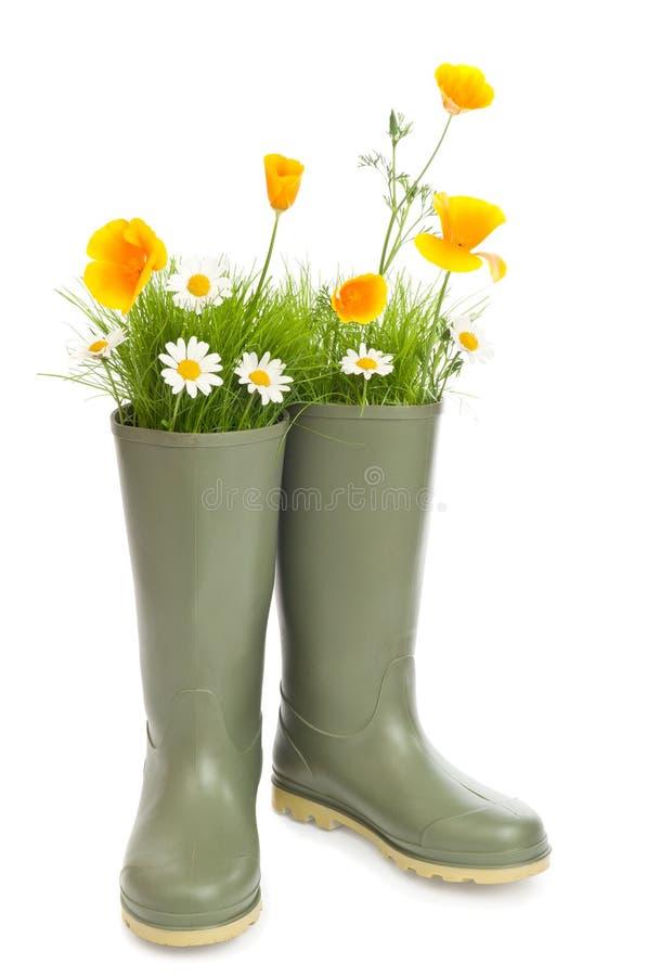 μπότες Ουέλλινγκτον στοκ εικόνα