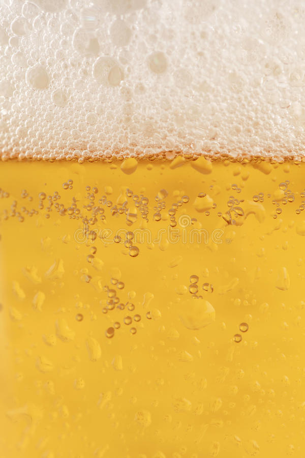 Μπύρα σε ένα γυαλί στοκ εικόνα με δικαίωμα ελεύθερης χρήσης