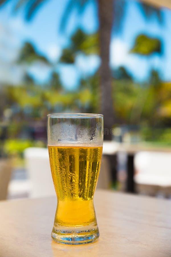 Μπύρα υπαίθρια στοκ εικόνα με δικαίωμα ελεύθερης χρήσης