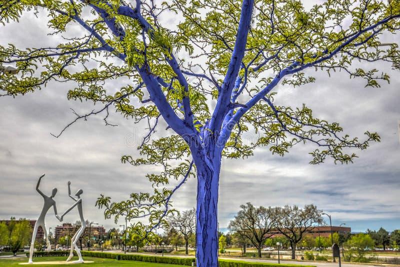 Μπλε δέντρα στο στο κέντρο της πόλης Ντένβερ στοκ φωτογραφίες