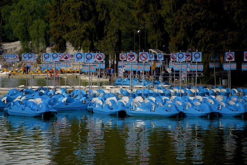Μπλε βάρκες κουπιών στοκ εικόνα