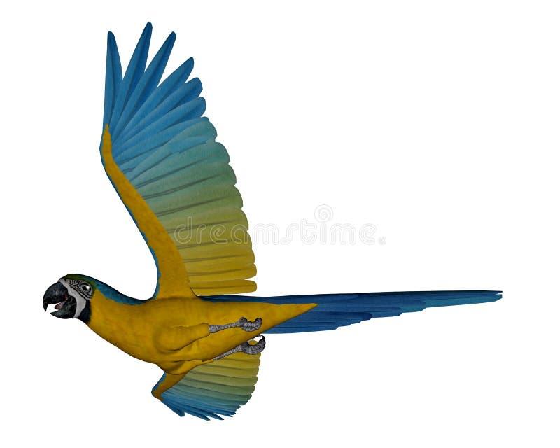 Μπλε και κίτρινο macaw, παπαγάλος, πέταγμα - τρισδιάστατο δώστε απεικόνιση αποθεμάτων