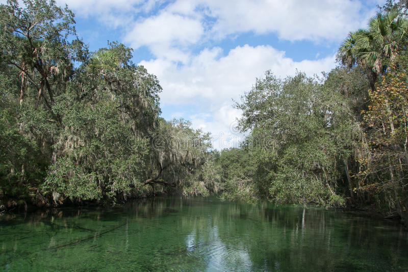 Μπλε κρατικό πάρκο ανοίξεων, Φλώριδα, ΗΠΑ στοκ εικόνες