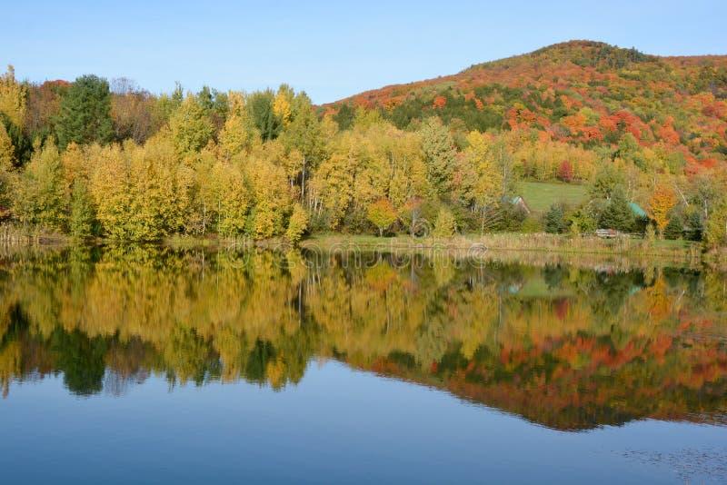 μπλε νεφελώδες πτώσης πεδίων δέντρο ουρανού τοπίων μόνο κίτρινο στοκ φωτογραφία με δικαίωμα ελεύθερης χρήσης
