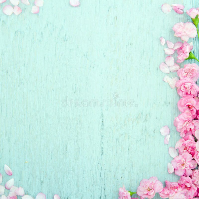 Μπλε ξύλινο υπόβαθρο με τα ρόδινα λουλούδια στοκ φωτογραφία με δικαίωμα ελεύθερης χρήσης