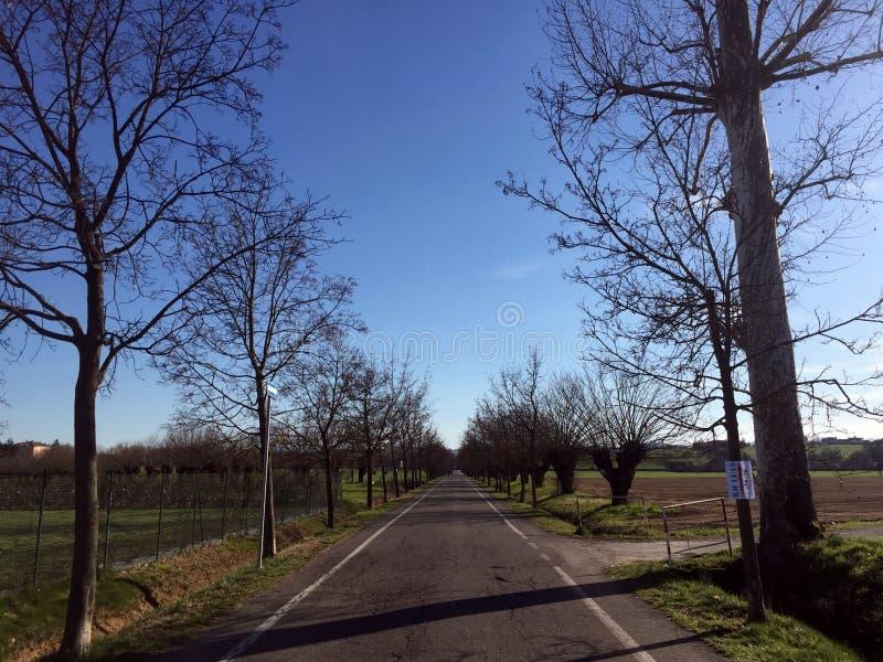 Μπλε ουρανός, κενοί κλάδοι σε μια εθνική οδό στοκ φωτογραφίες με δικαίωμα ελεύθερης χρήσης