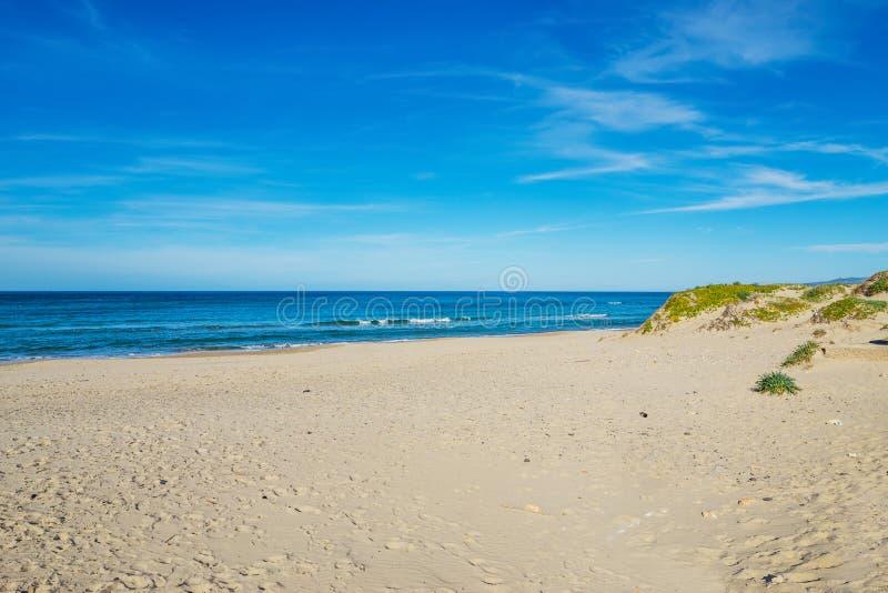 Μπλε ουρανός πέρα από την ακτή Platamona στοκ εικόνες