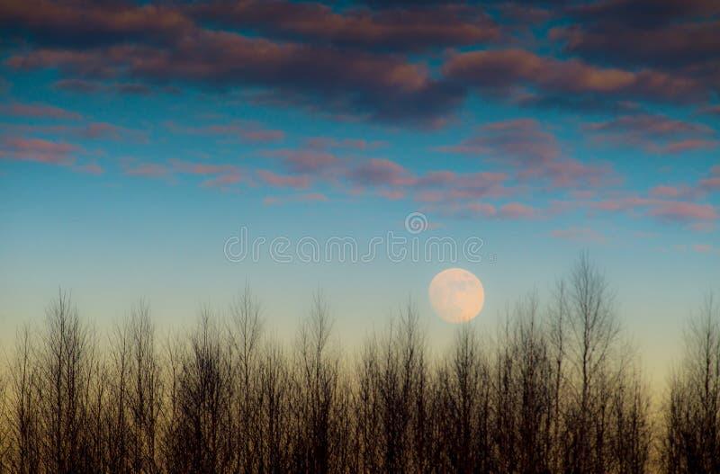 μπλε ουρανός φεγγαριών στοκ φωτογραφίες