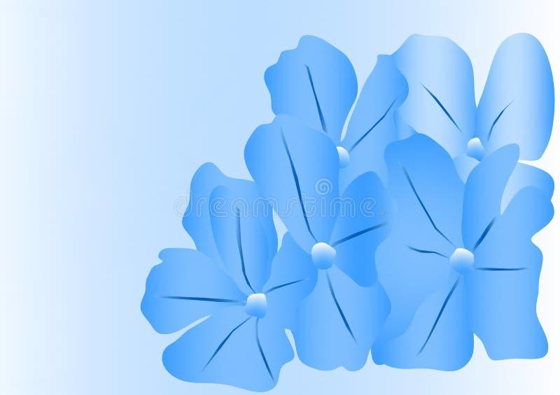 Μπλε λουλουδιών στοκ φωτογραφίες