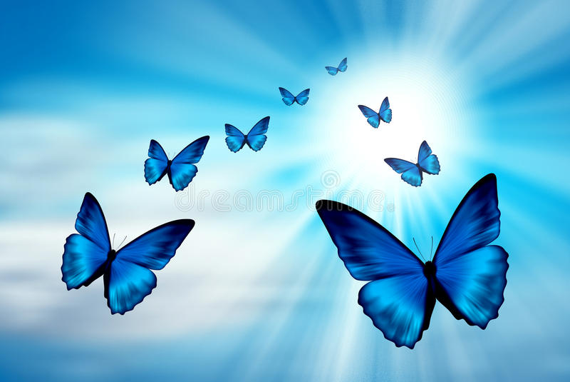 Μπλε πεταλούδες στον ουρανό απεικόνιση αποθεμάτων