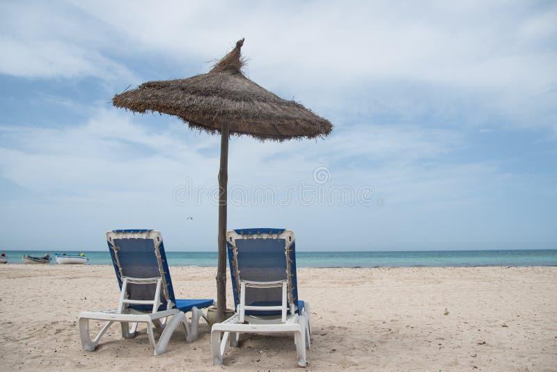 Μπλε σαλόνια θάλασσας και μονίππων στοκ εικόνες