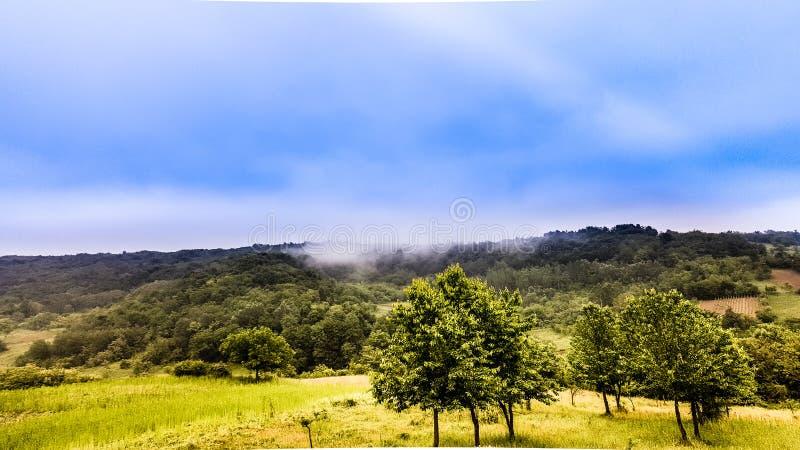 μπλε σύννεφων πλήρες πράσινο τοπίο εστίασης πεδίων ημέρας οφειλόμενο λίγη μετακίνηση όχι εμφανίζει στον ουρανό κάποια άνοιξη που  στοκ φωτογραφία με δικαίωμα ελεύθερης χρήσης