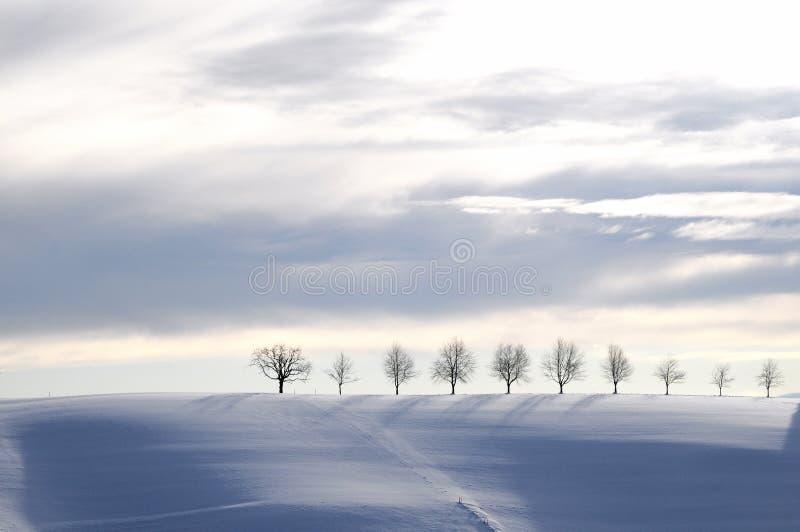 Μπλε χειμερινό τοπίο στοκ εικόνα με δικαίωμα ελεύθερης χρήσης