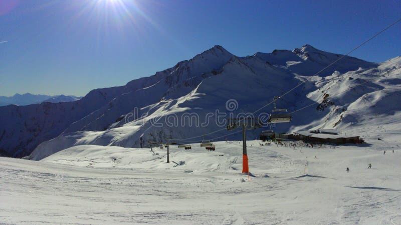 μπλε χειμώνας κύκνων ονείρου ανασκόπησης frostwork στοκ φωτογραφία