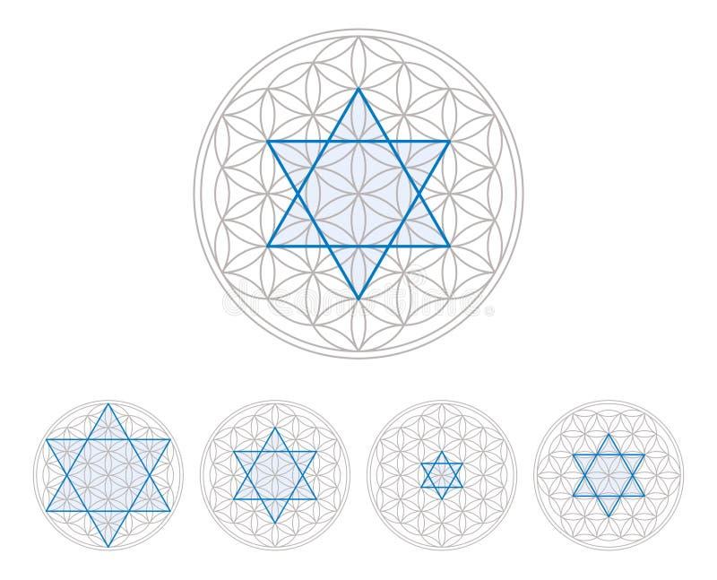 Μπλε hexagram στο λουλούδι της ζωής απεικόνιση αποθεμάτων