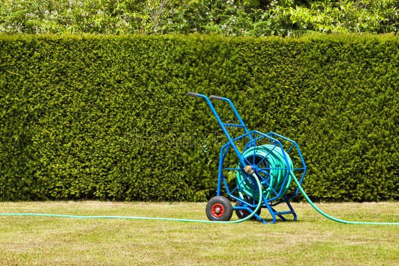 Μπλε hosepipe σε έναν χορτοτάπητα ενάντια στον πράσινο φράκτη στοκ φωτογραφίες με δικαίωμα ελεύθερης χρήσης