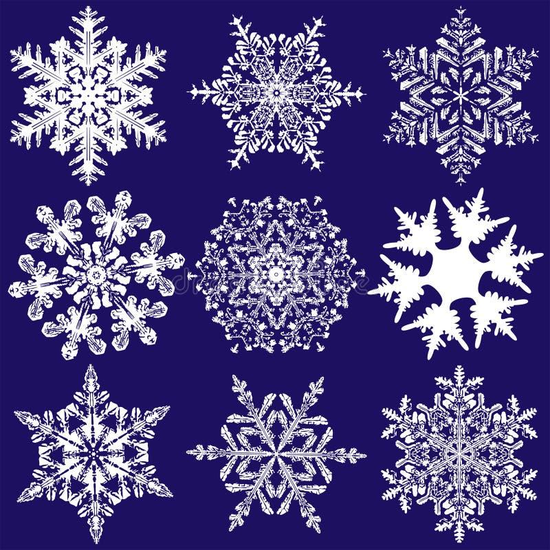 μυθικός περισσότερα εννέα αρχικά snowflakes απεικόνιση αποθεμάτων