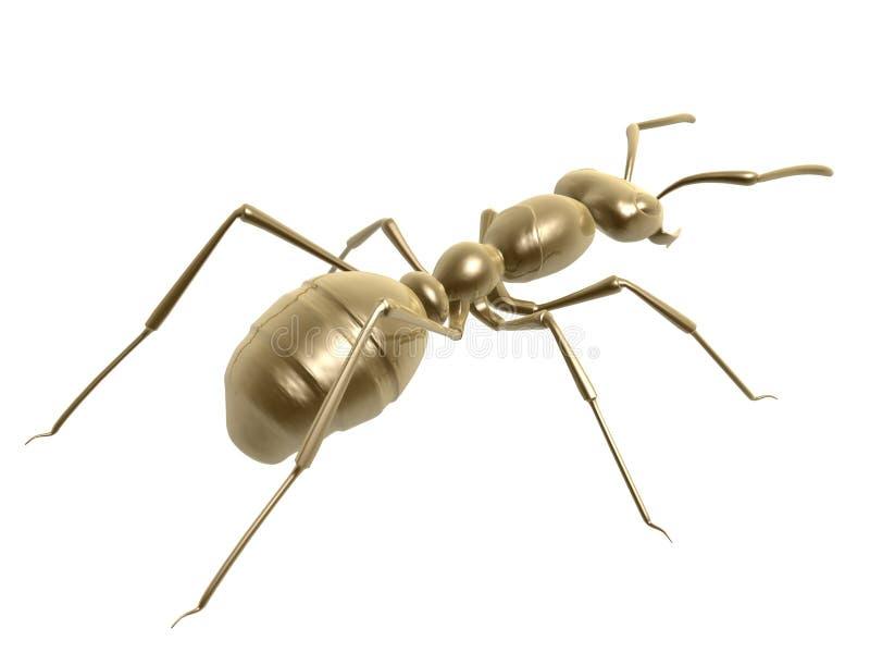 μυρμήγκι χρυσό ελεύθερη απεικόνιση δικαιώματος