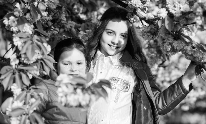 Μυρωδιά ανθών, αλλεργία Αδελφότητα τα μικρά παιδιά κοριτσιών ανθίζουν την άνοιξη την άνθιση Φυσικά καλλυντικά για το δέρμα r στοκ εικόνες