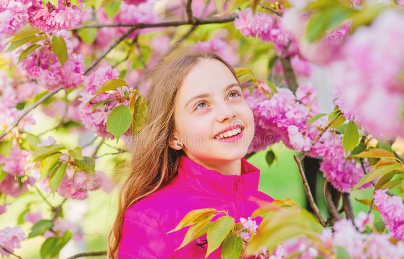 Μυρωδιά ανθών, αλλεργία το μικρό κορίτσι ανθίζει την άνοιξη την άνθιση Skincare spa Φυσικά καλλυντικά για το δέρμα ευτυχές κορίτσ στοκ εικόνες με δικαίωμα ελεύθερης χρήσης