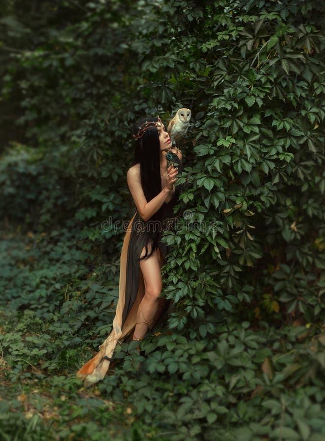 Μυστήρια μάγισσα με ένα πουλί στοκ εικόνες με δικαίωμα ελεύθερης χρήσης