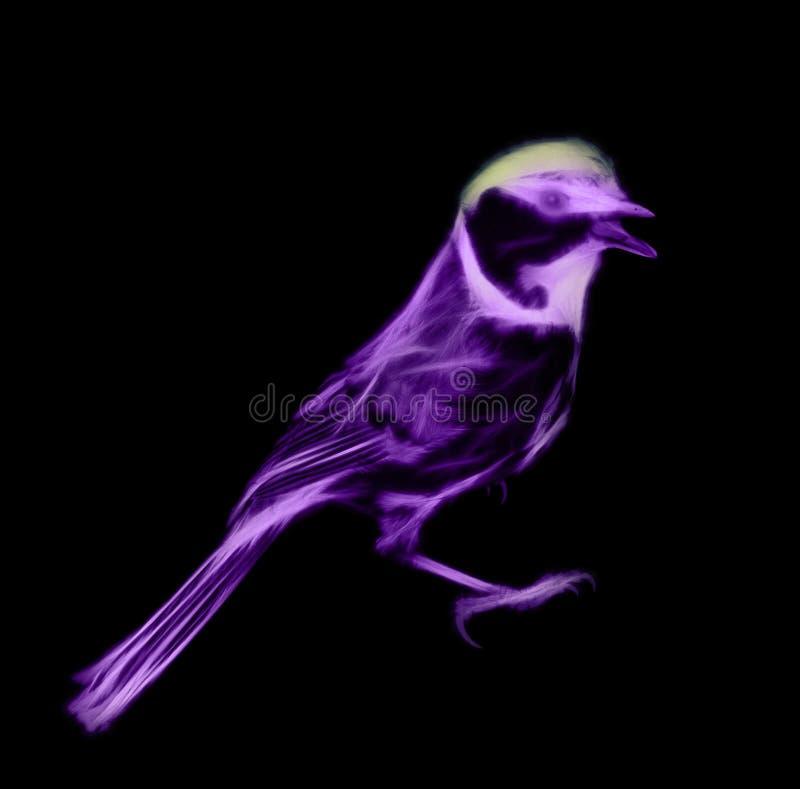 Μυστήριο πουλί νύχτας, ψυχή της νύχτας όχι απεικόνιση αποθεμάτων
