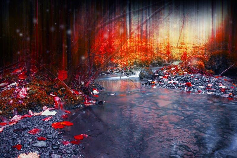 Μυστήριο σκοτεινό δάσος με τη μαγική, υπερφυσική ροή κολπίσκου στοκ εικόνες