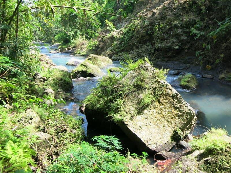 Μυστικός κήπος Sambangan στο Μπαλί, Ινδονησία στοκ εικόνα