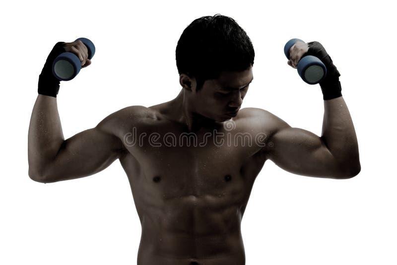 Μυϊκή άσκηση ατόμων του Yong με τους αλτήρες στοκ φωτογραφία