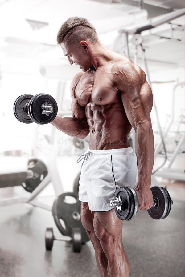 Μυϊκός τύπος bodybuilder που κάνει τις ασκήσεις με τον αλτήρα στοκ εικόνες