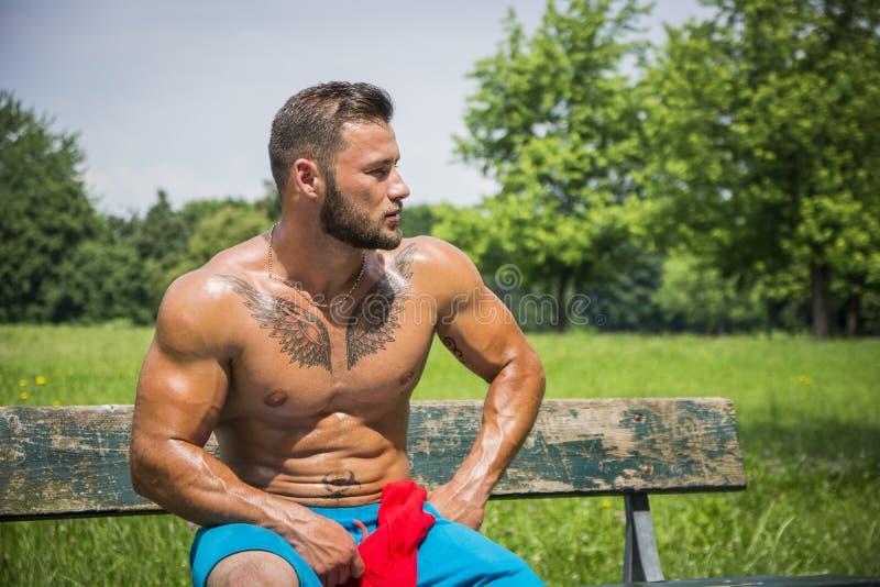 Μυϊκό άτομο Hunk γυμνοστήθων υπαίθριο στο πάρκο πόλεων στοκ φωτογραφίες με δικαίωμα ελεύθερης χρήσης
