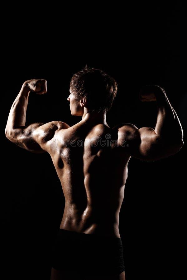 Μυϊκό ΠΙΣΩ ΜΈΡΟΣ του αρσενικού προτύπου bodybuilder που προετοιμάζεται για την ικανότητα TR στοκ φωτογραφία