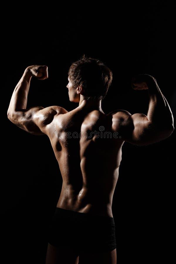 Μυϊκό ΠΙΣΩ ΜΈΡΟΣ του αρσενικού προτύπου bodybuilder που προετοιμάζεται για την ικανότητα TR στοκ εικόνες