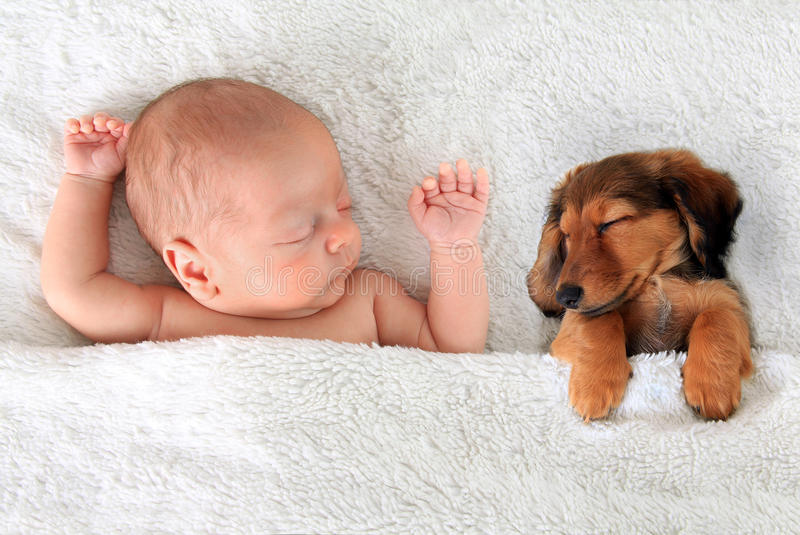 Μωρό και κουτάβι ύπνου στοκ εικόνα με δικαίωμα ελεύθερης χρήσης