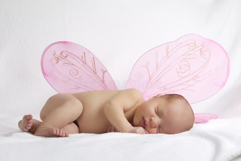 Μωρό με τα ρόδινα φτερά αγγέλου στην άσπρη ανασκόπηση στοκ φωτογραφίες