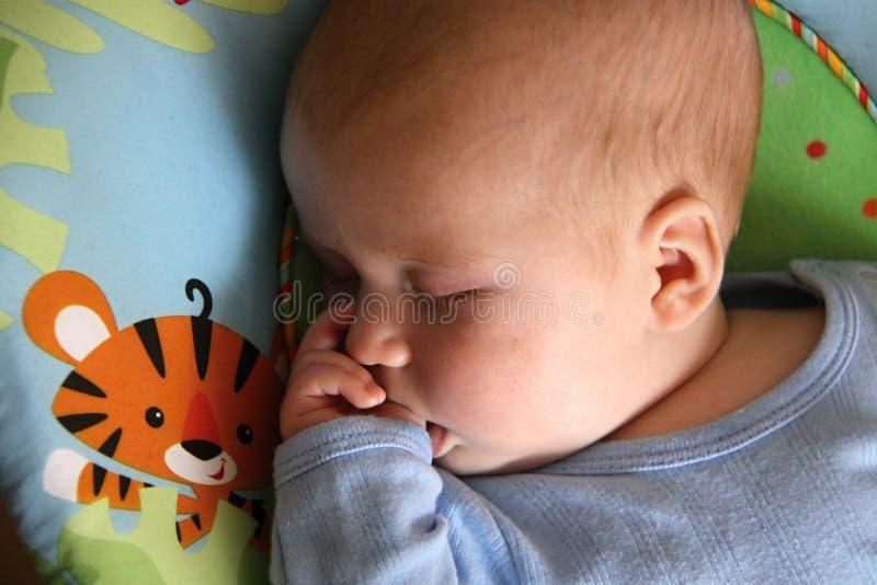 Μωρό ύπνου στο μπλε πουκάμισο που απορροφά τον αντίχειρά του στοκ φωτογραφία