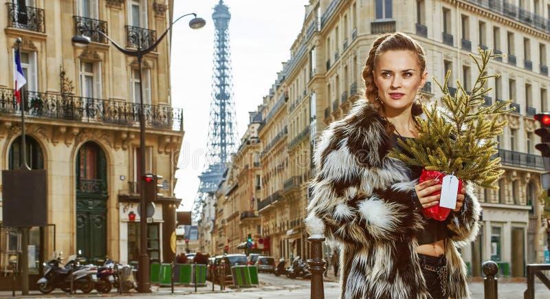 Μόδα-έμπορος με το χριστουγεννιάτικο δέντρο που εξετάζει την απόσταση, Παρίσι στοκ φωτογραφίες με δικαίωμα ελεύθερης χρήσης
