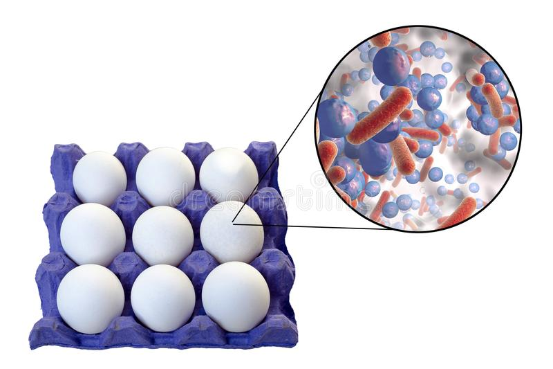 Μόλυνση των αυγών με τα βακτηρίδια, ιατρική έννοια για τη μετάδοση των μολύνσεων τροφίμων μέσω των αυγών στοκ φωτογραφία με δικαίωμα ελεύθερης χρήσης
