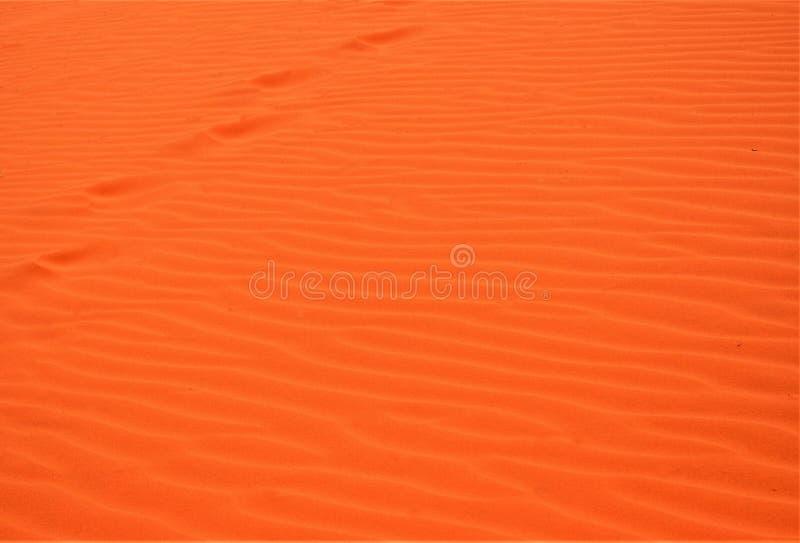 Μόνα ίχνη σε μια άμμο στοκ φωτογραφίες με δικαίωμα ελεύθερης χρήσης