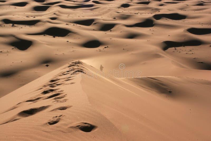 μόνη έρημος στοκ εικόνες με δικαίωμα ελεύθερης χρήσης